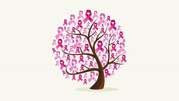 Quais coberturas o plano de saúde deve oferecer às pacientes com câncer de  mama  874e0093fe64